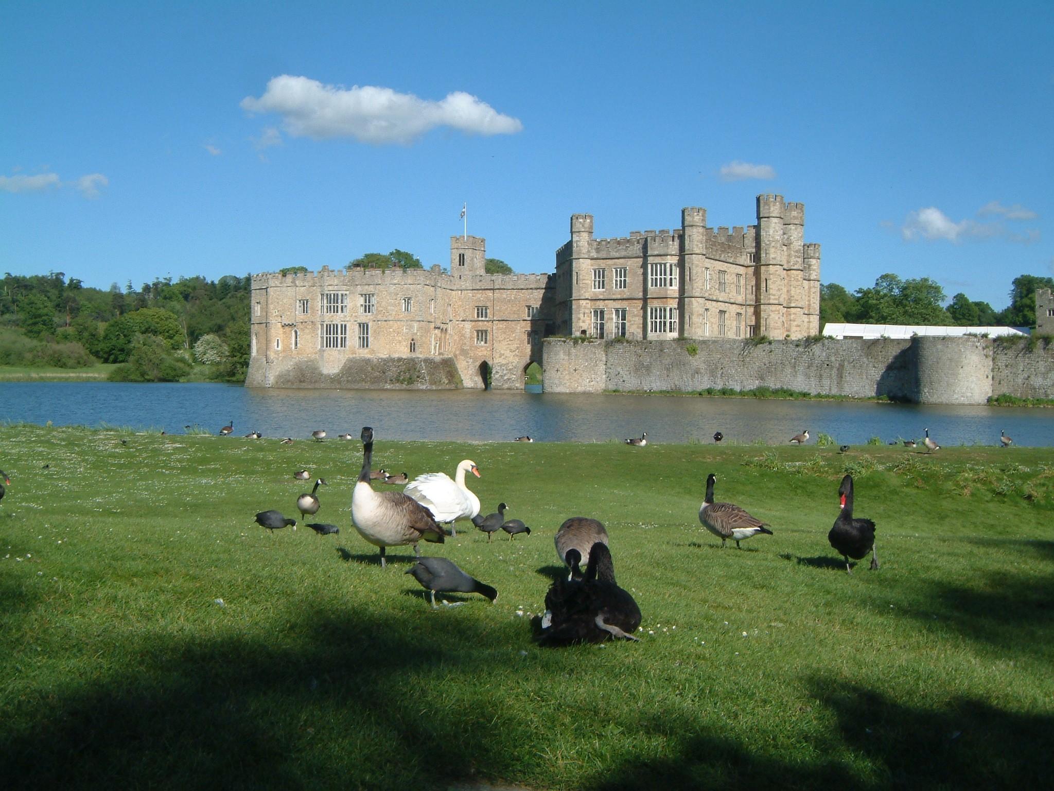 Leeds castle kent england2