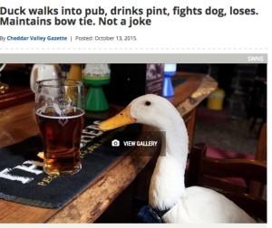 Най-забавните новини от британските медии за последната година